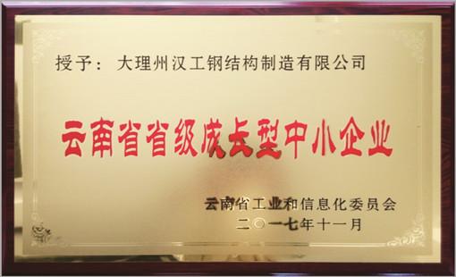 云南省升级成长型中小企业(大理汉工)