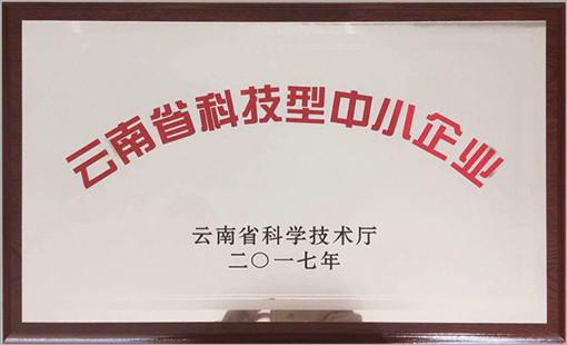 汉工钢构荣誉-云南省科技型中小企业